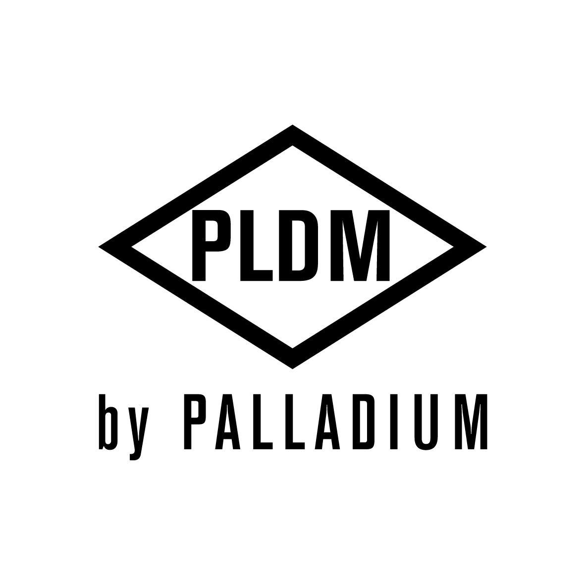 logo PLDM by PALLADIUM